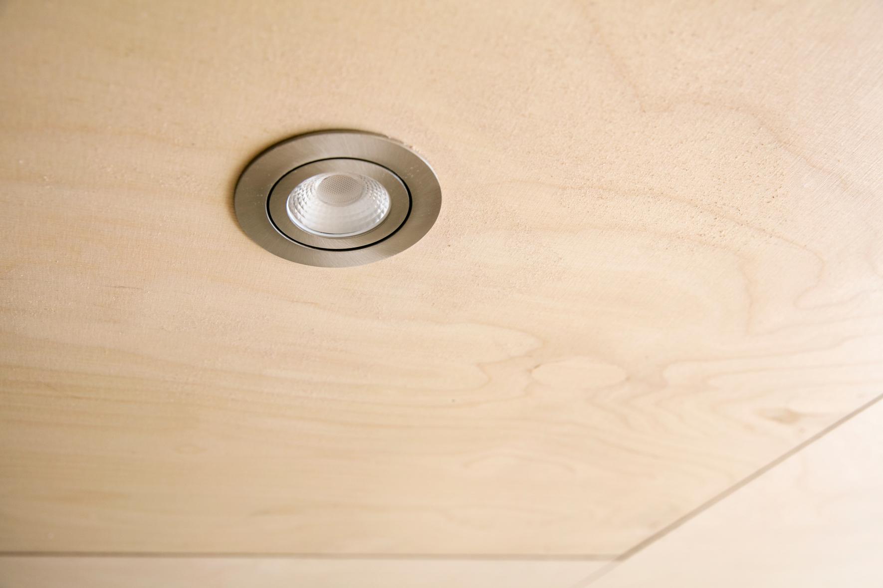Takpanel av trä i ljus björk med spotlampa.